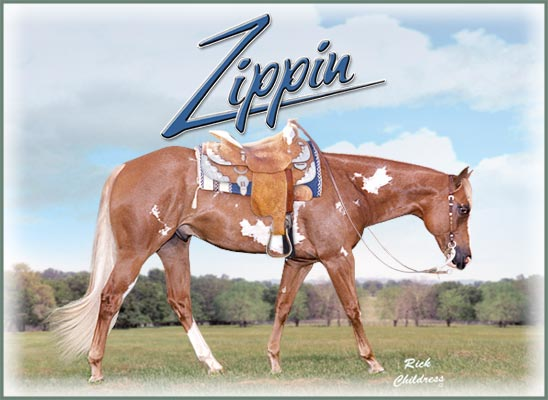 Zippin 1991 Sorrel Overo APHA Stallion by Zippo Pine Bar Multiple World Champion